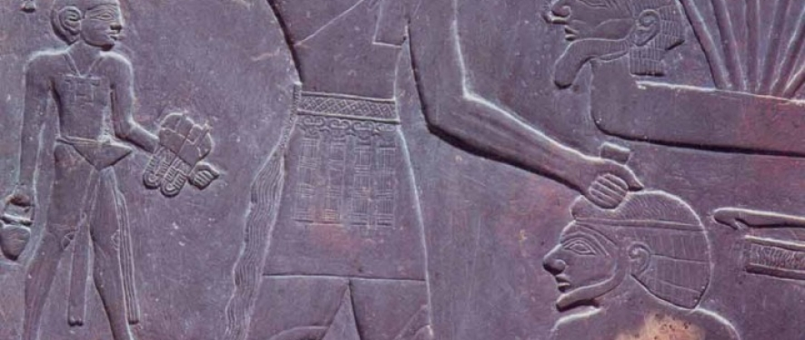 a9dd5f1d008f Analysis of royal sandals in ancient Egypt